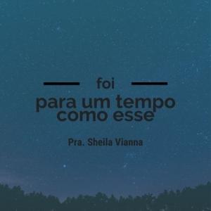 - Sheila Vianna - Bola de Neve Santos